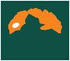 logo-lifb